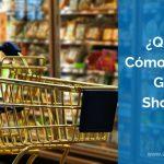 ¿Qué es y Cómo Funciona Google Shopping?