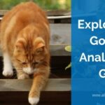 Primeros Pasos con Google Analytics 4